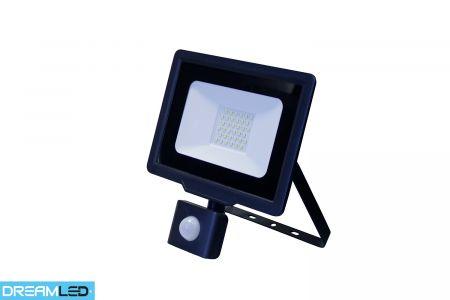 Led-buitenlamp 30 W met sensor Dreamled